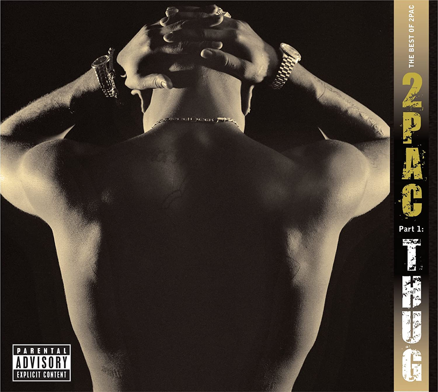 2Pac - Vinyl The Best Of 2Pac - Part 1: Thug