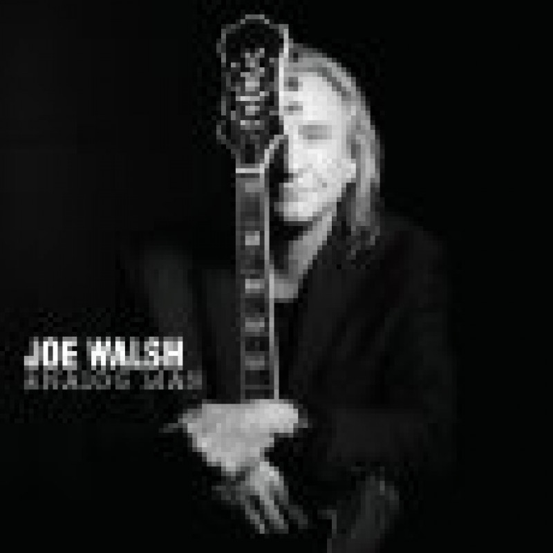 CD WALSH JOE - ANALOG MAN