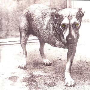 Alice In Chains - CD Alice In Chains