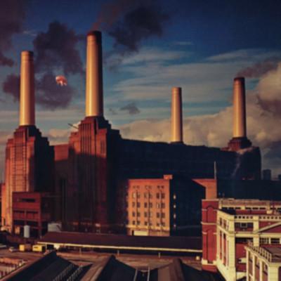 Pink Floyd - CD ANIMALS (2011)