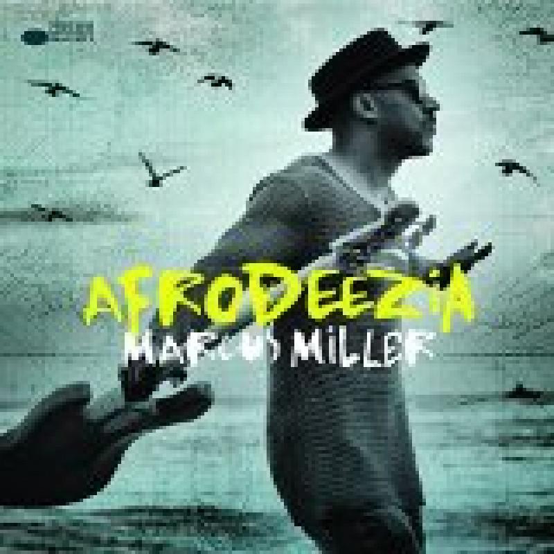 CD MILLER MARCUS - AFRODEEZIA