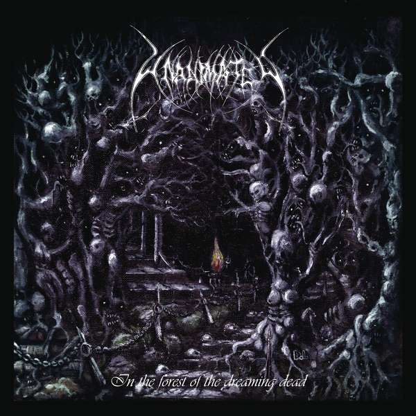 Vinyl UNANIMATED - In The Forest Of The Dreaming