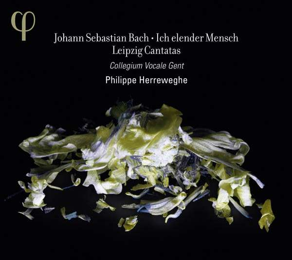 CD BACH, J.S. - ICH ELENDER MENSCH (LEIPZIG CANTATAS II)