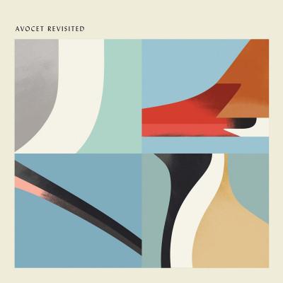 Vinyl V/A - AVOCET REVISITED