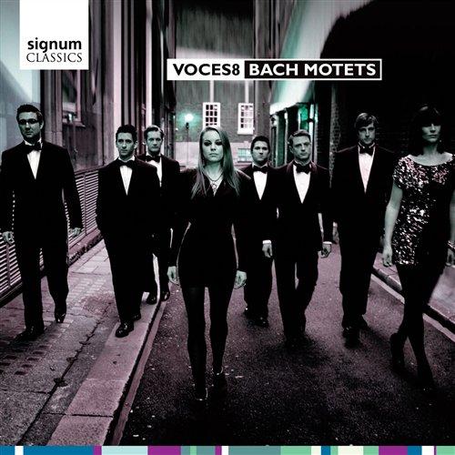 CD BACH, J.S. - MOTETS