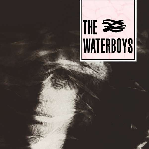 CD WATERBOYS, THE - THE WATERBOYS