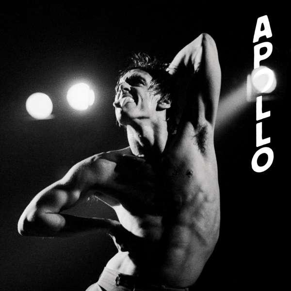 """Vinyl POP, IGGY - APOLLO -10""""-"""