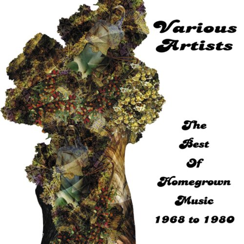 CD V/A - BEST OF HOMEGROWN MUSIC 1968 TO 1980