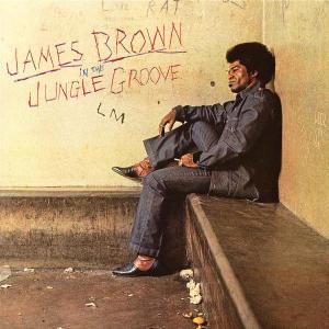 CD BROWN JAMES - IN THE JUNGLE GROOVE