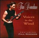 CD DONAHUE, TIM - VOICES IN THE WIND