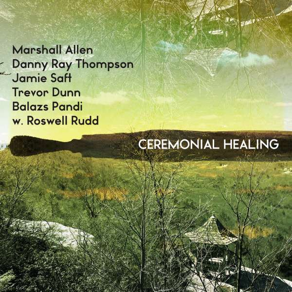 Vinyl V/A - CEREMONIAL HEALING