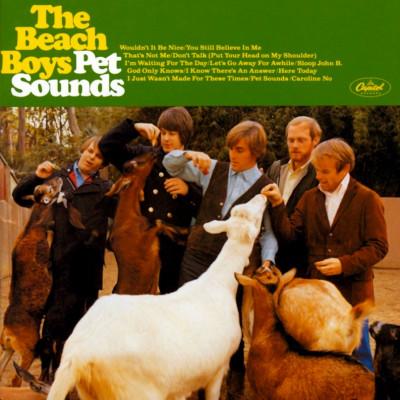 The Beach Boys - CD PET SOUNDS/DELUXE