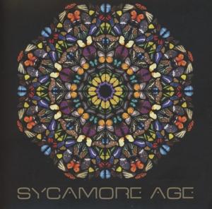 CD SYCAMORE AGE - SYCAMORE AGE